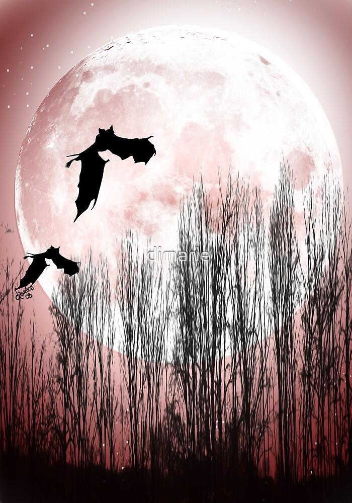 Full Moon by dimarie