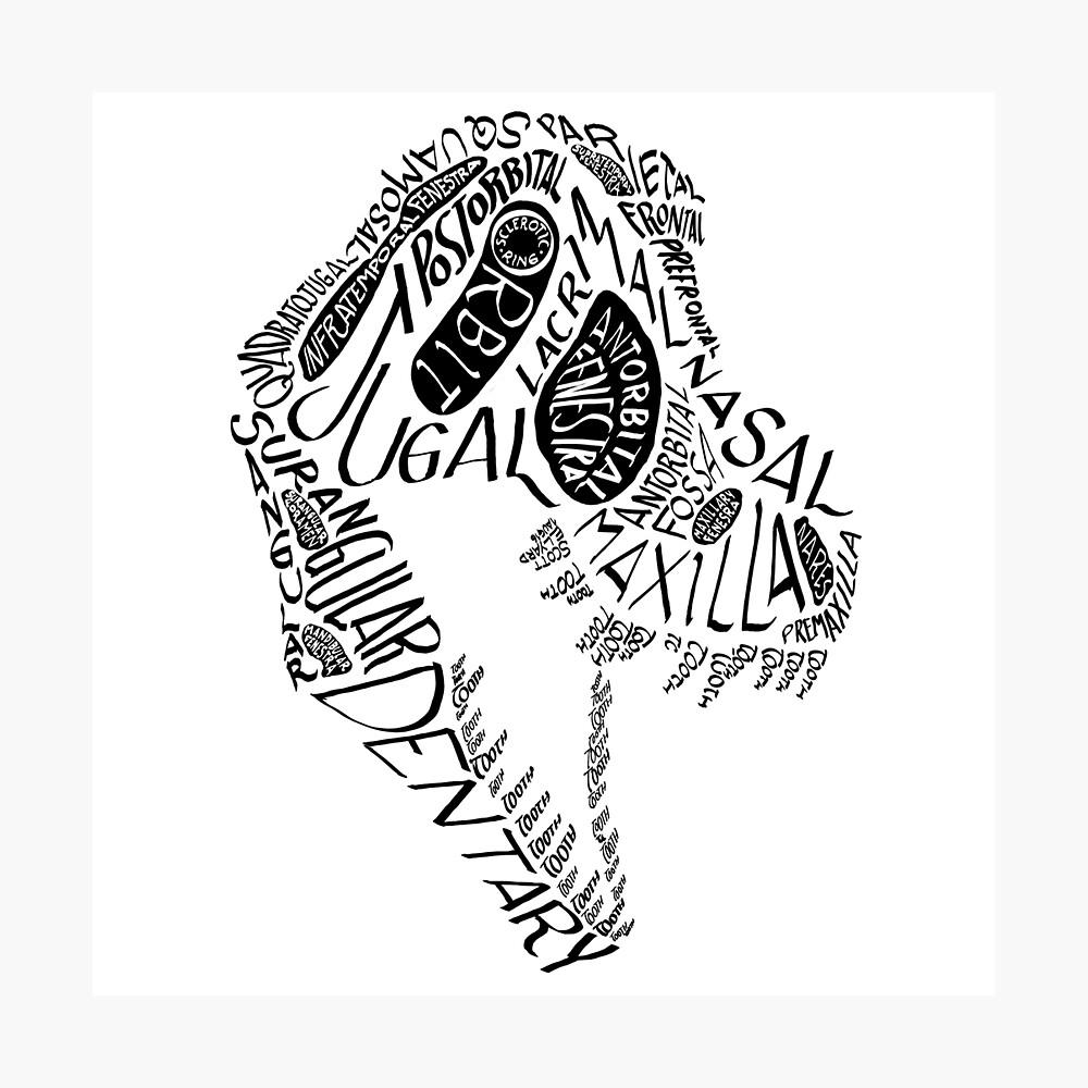 Black Calligram Tyrannosaur Skull Photographic Print