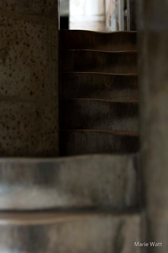 Steps by Marie Watt