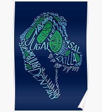 Analogous Colors Calligram Tyrannosaur Skull Poster