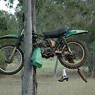 Wondai,Queensland,Australia 2016-Bike In A Tree by muz2142