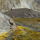 White Island  - Looking towards the crater by Danielle Kennedy Boyd