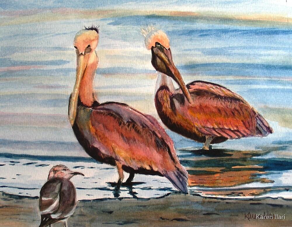 Pelican Party by Karen Ilari