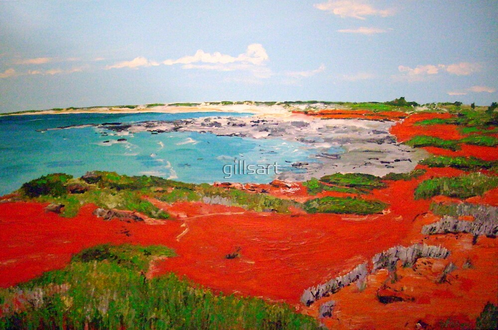Broome View  by gillsart