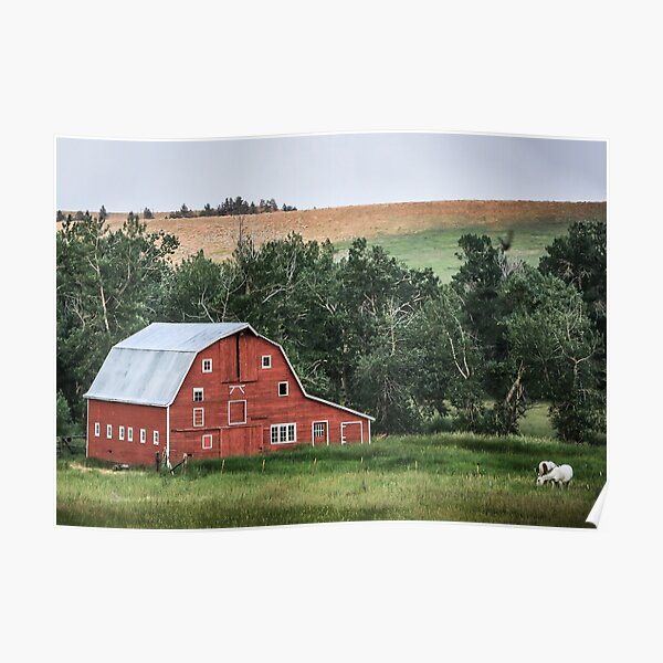 Old Homestead Barn Poster