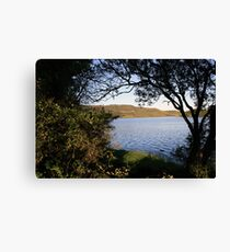 Inchiquin lake morning view 3 Canvas Print