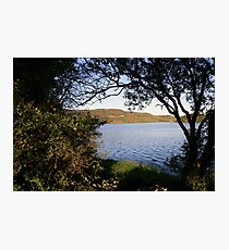 Inchiquin lake morning view 3 Photographic Print