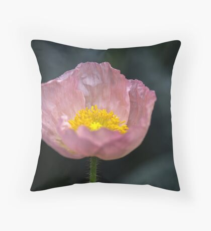 She said her name was Patricia but I call her Poppy Throw Pillow