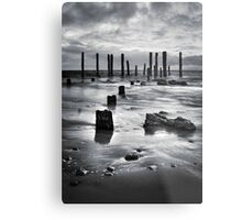 Metal Print
