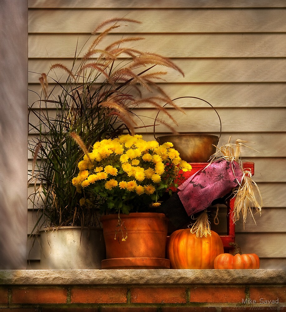 Autumn Still Life II by Michael Savad