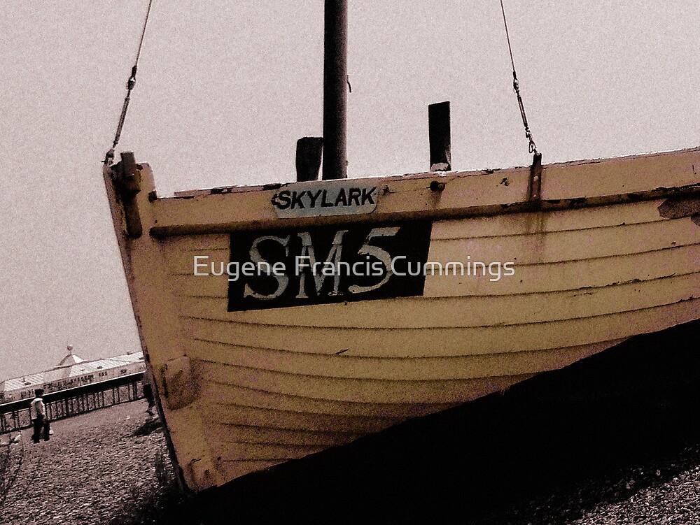 All aboard the Skylark! by Eugene Francis Cummings