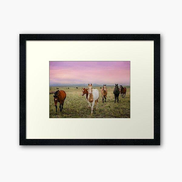 The Colors of Sunrise Framed Art Print