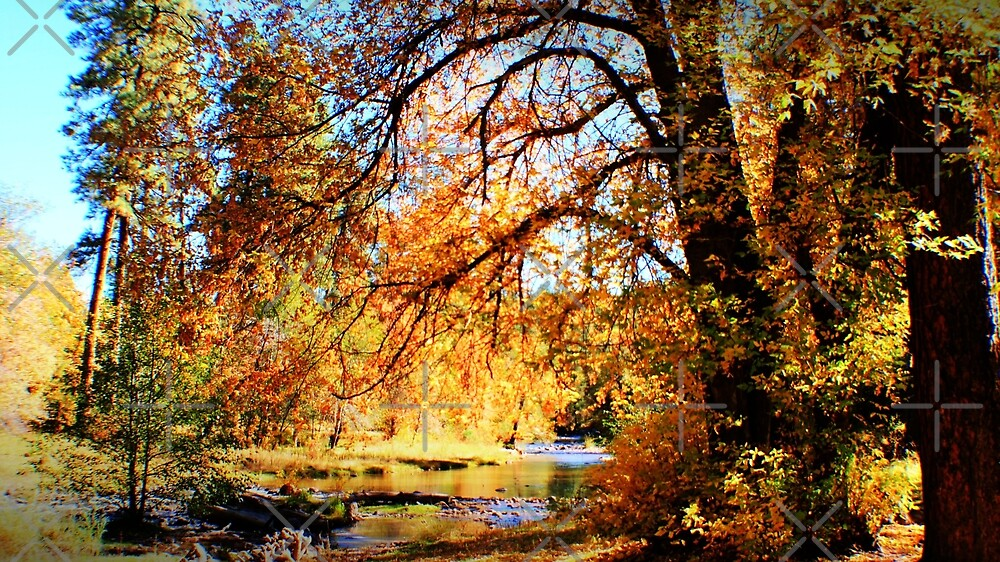 Fall Waters by Janette  Kimbrough