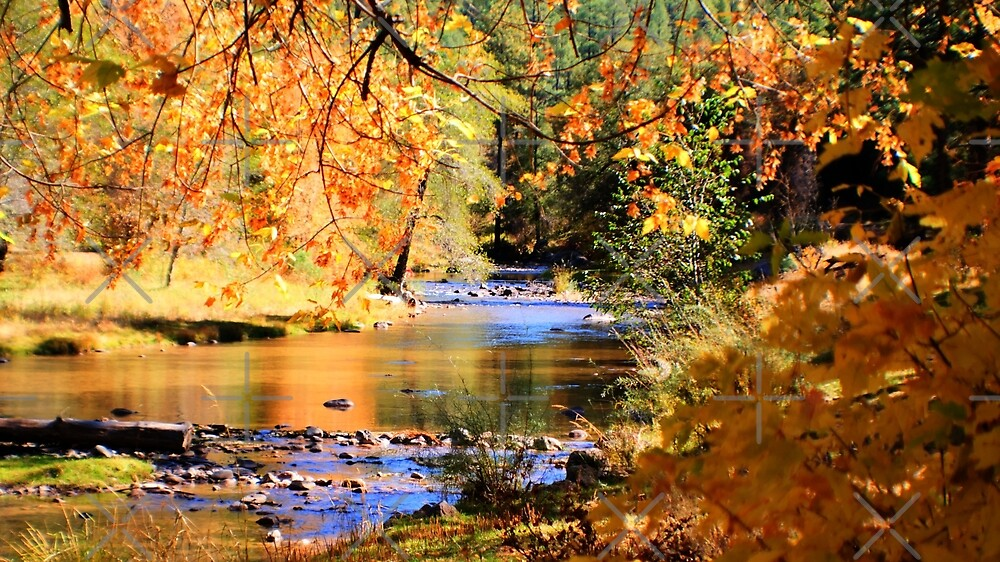 Fall Waters 2 by Janette  Kimbrough