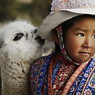 Cheeky alpaca  by simon gleeson
