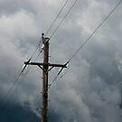 High Wire by David Sundstrom