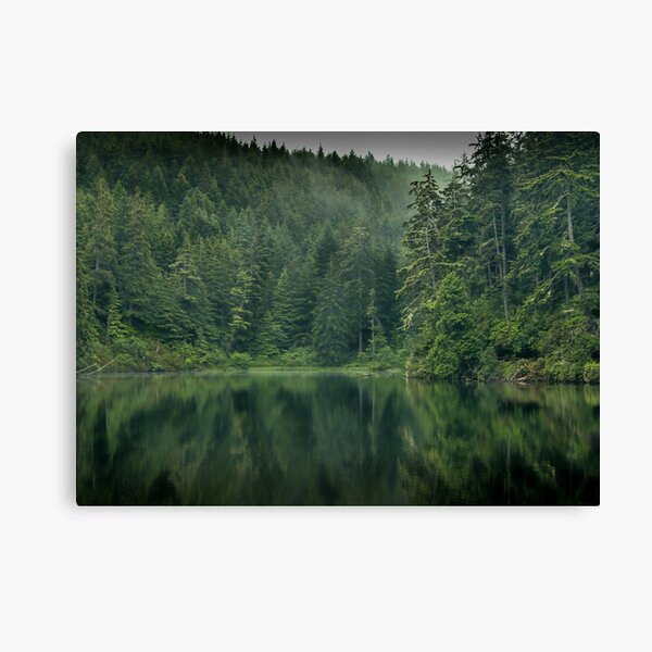 Hidden Tranquility Canvas Print