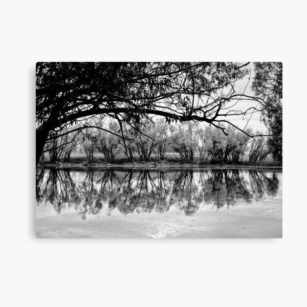 Pallid Reflection Canvas Print