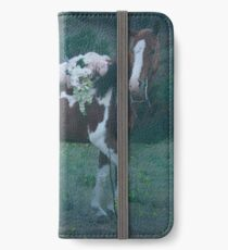 Where Dreams and Shadows Lie iPhone Wallet/Case/Skin