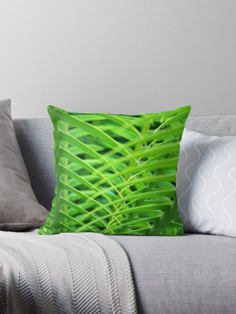 Quot Patterns In Nature Quot Throw Pillows By Mark Richards