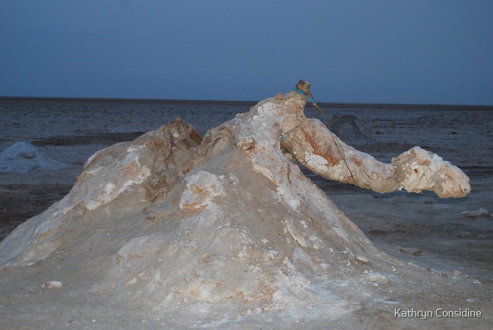 Salt Sculpture  by Kathryn Considine