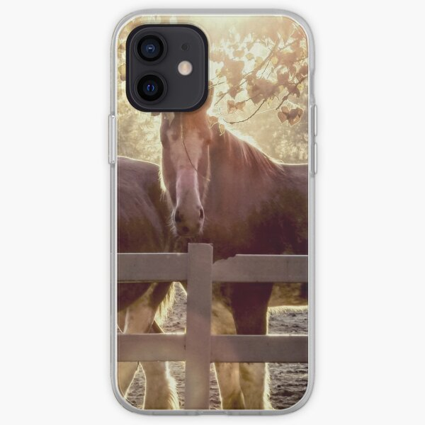 Early Morning Beauty iPhone Soft Case