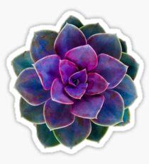 Succulent Purple Sticker