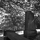 Graveyard  by Scott Moore