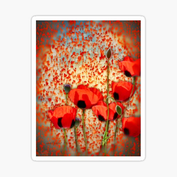 Flanders fields  Sticker