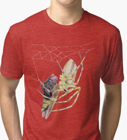 Spider caught a fly Tri-blend T-Shirt