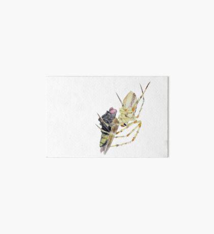 Spider caught a fly Art Board Print