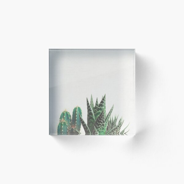 Cactus & Succulents Acrylic Block