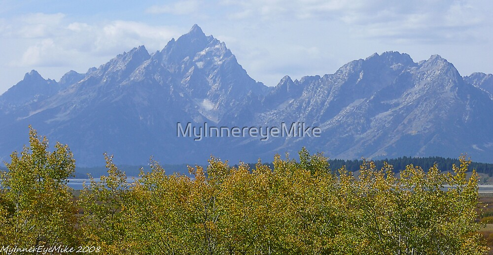 #571    Aspens & Mountains by MyInnereyeMike