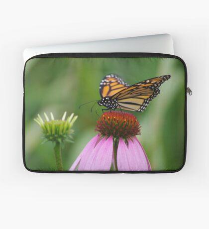 softly landing on an echinacea flower Laptop Sleeve
