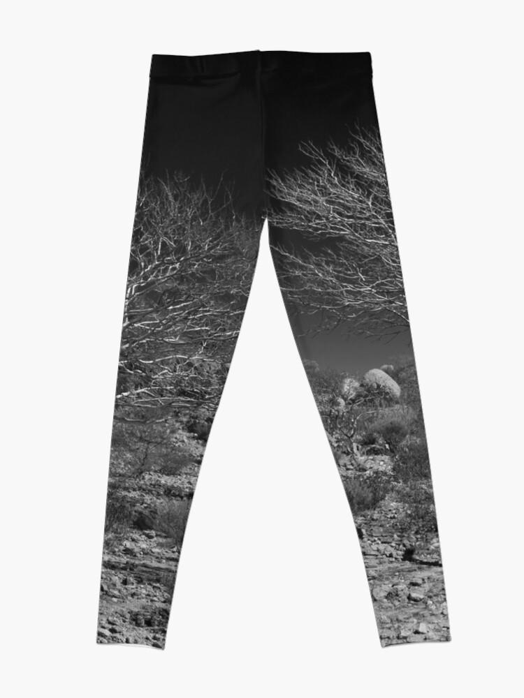 Alternate view of Outback Tree Acacia grasbyii minirichie, Black and white. Leggings