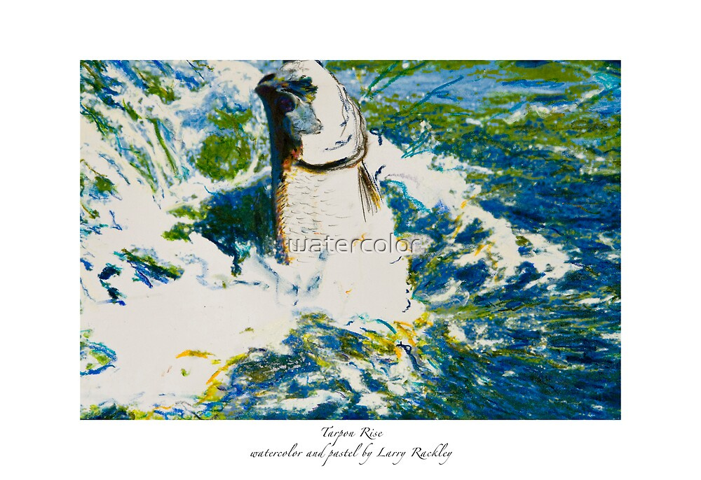 Tarpon Rise by watercolor