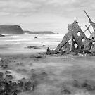 SS Speke shipwreck - Kitty Miller Bay by Jim Worrall