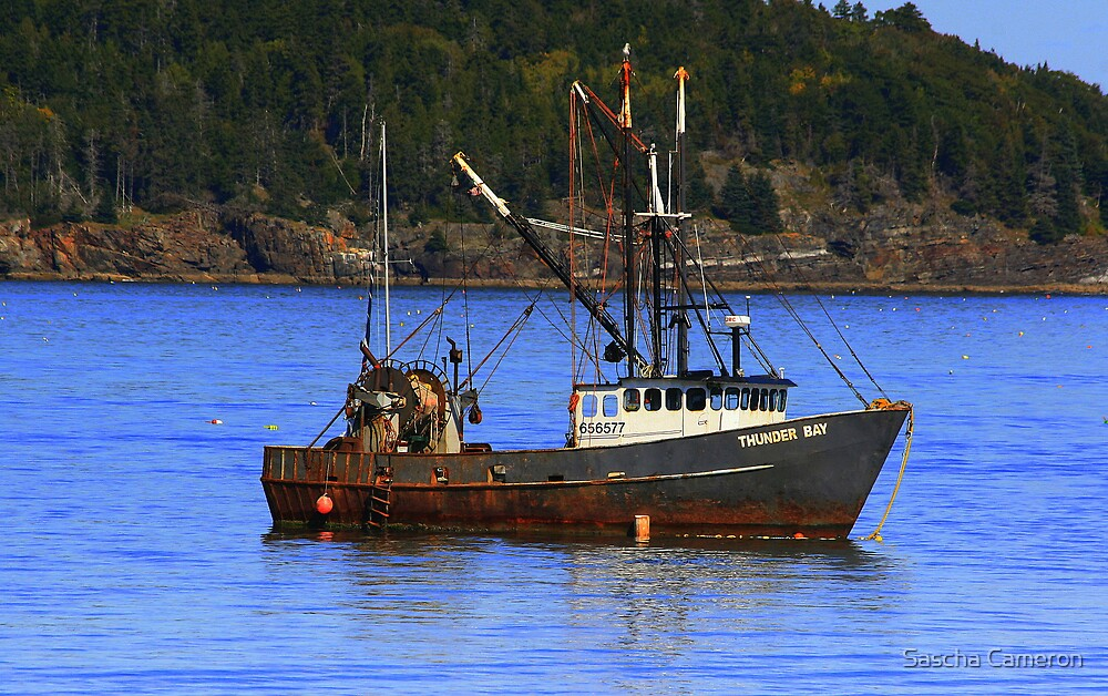 Fishing Boat by Sascha Cameron