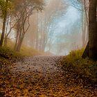 Autumn by Nicole W.