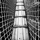 bridge by Falko Follert