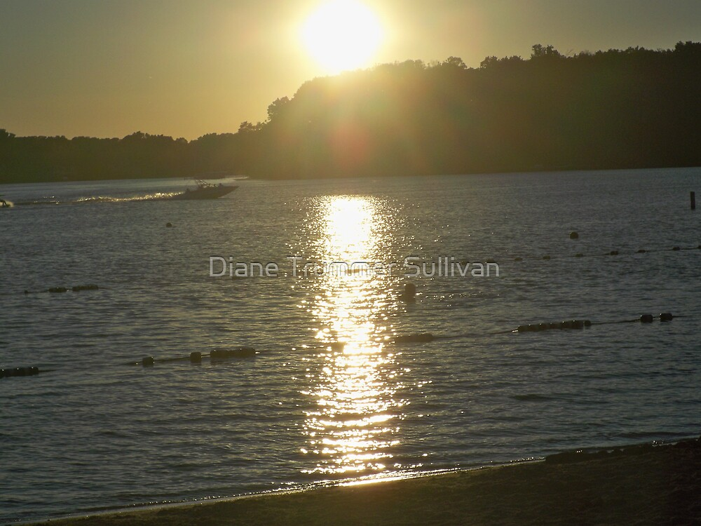 Speed Boat Sunset ReflectionS by Diane Trummer Sullivan