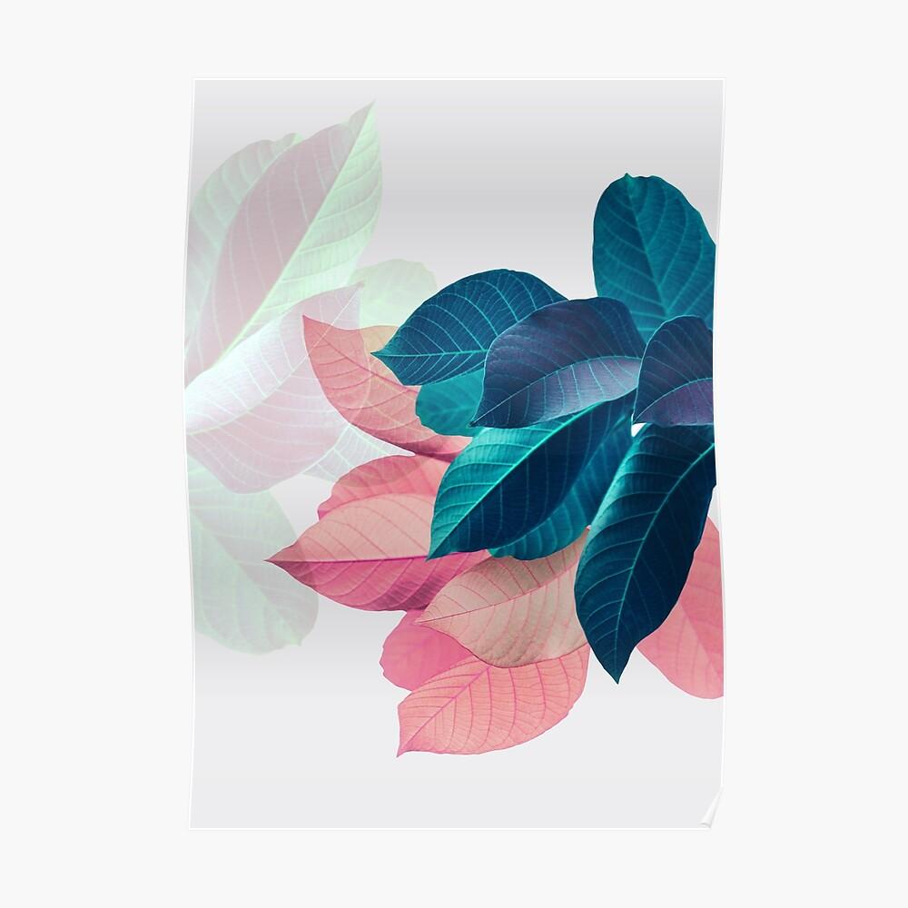 Blue Pink Plant Leaf Poster