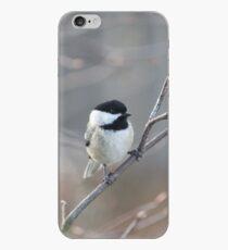 Black Capped Chickadee iPhone Case