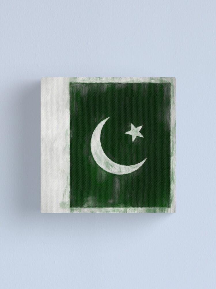 Alternate view of Pakistani Flag No. 2, Series 2 Canvas Print