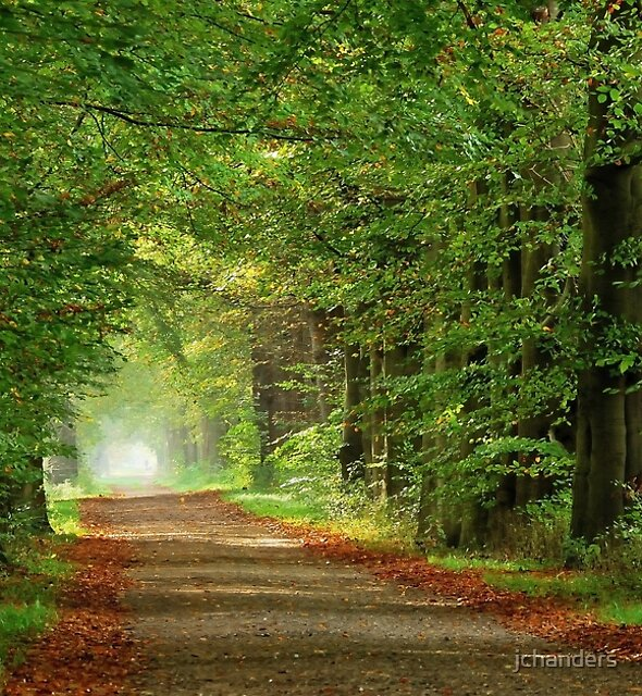 And the lanes are still green by jchanders