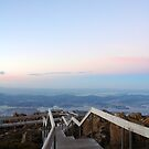 Board walk- Mt Wellington by Caro