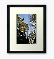 glen Framed Print