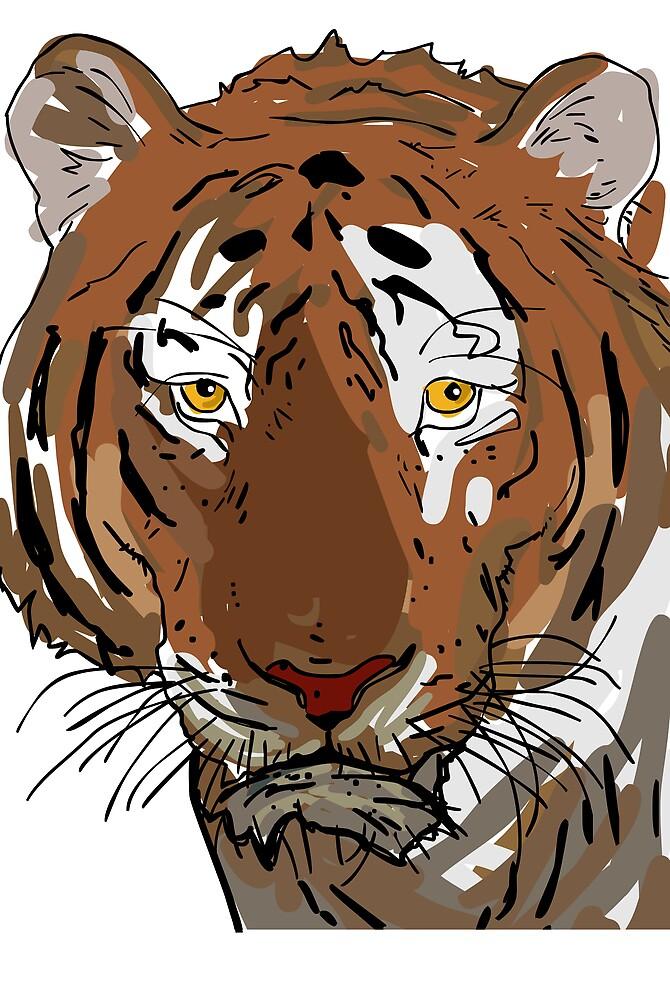 tiger by Berker Sirman