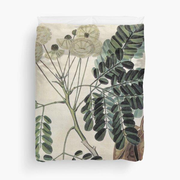 acacia vintage botanical print Duvet Cover