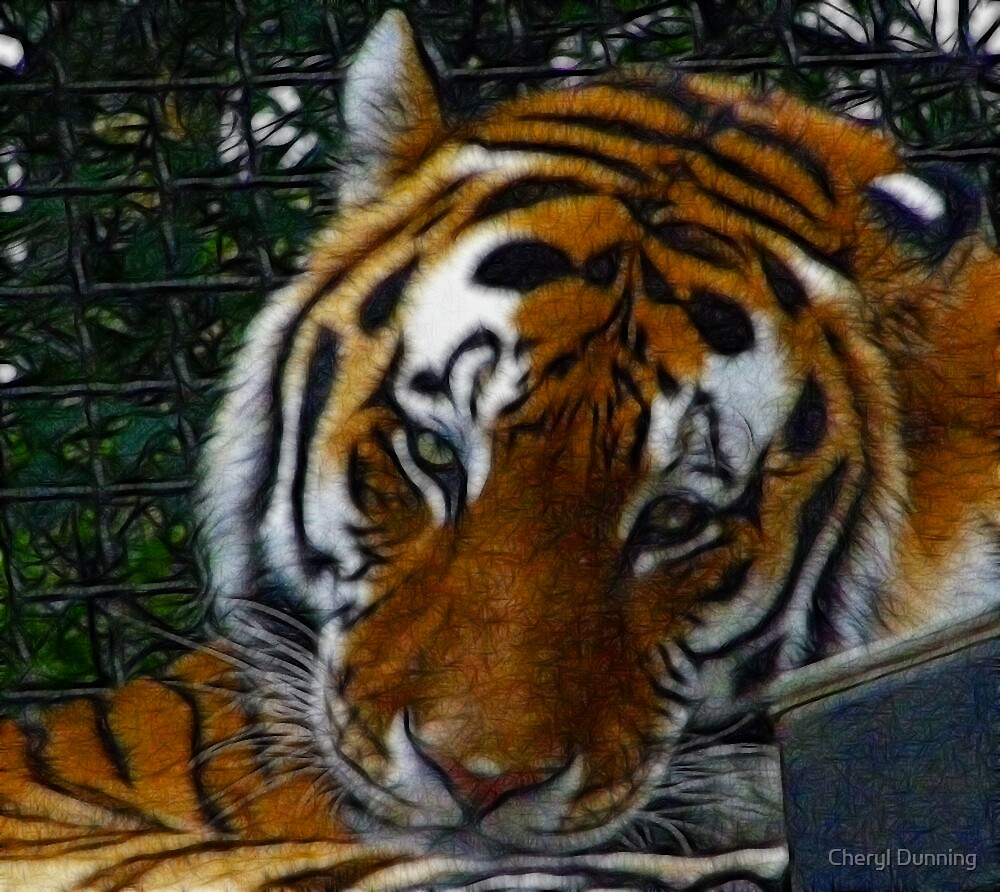 sad tiger 2 by Cheryl Dunning